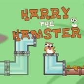 Игра Приключения и бродилка мышонка по трубам