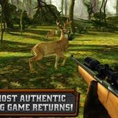 Игра Deer Hunter: охота на оленей - картинка