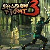 Игра Бой с тенью 3: новая часть