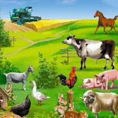 Игра Найди животных