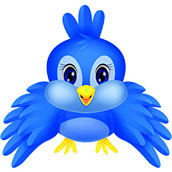 Игра Раскраска птицы