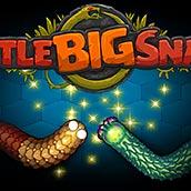 Игра Маленькая большая змейка - картинка