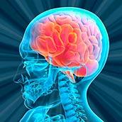 Игра Тест на Возраст Мозга