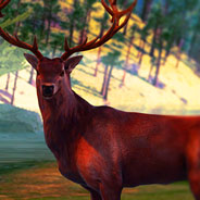 Игра Симулятор Охоты Онлайн - картинка