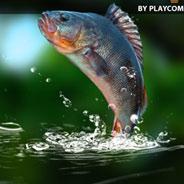 Игра Рыбалка на Озере - картинка