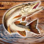 Игра Рыбный Дождь